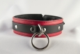 Red Jaguar Collar